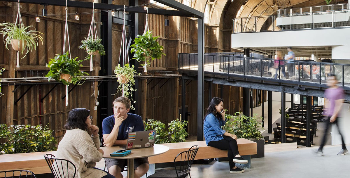 Biophilic Design at Google